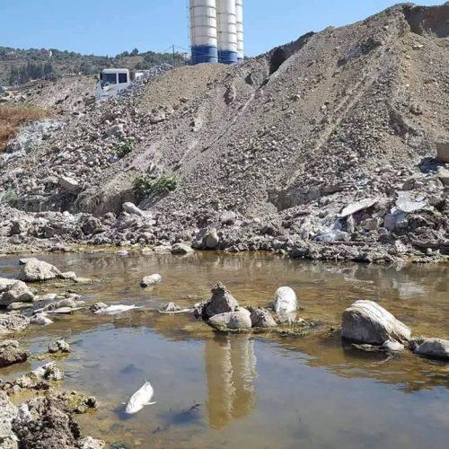 Catastrophe écologique de l'oued Soummam (Bejaia) : où sont les responsables ?
